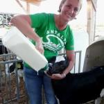 Janette Krischek bei Behrends web